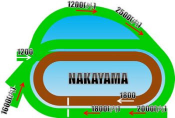 中山競馬場コースの特徴