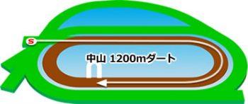 中山競馬場のコースの特徴:ダート1200m