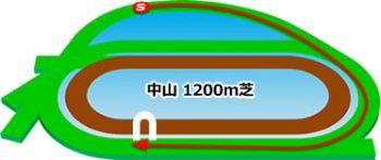 中山競馬場のコースの特徴:芝1200m