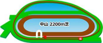 中山競馬場のコースの特徴:芝2200m