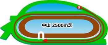 中山競馬場のコースの特徴:芝2500m