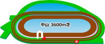 中山競馬場のコースの特徴:芝3600m