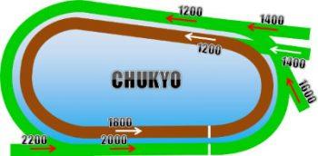 中京競馬場のコースの画像