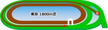 東京競馬場の芝コース1800m
