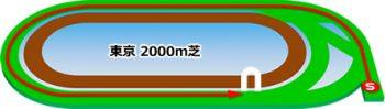 東京競馬場の芝コース2000m