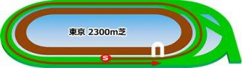 東京競馬場の芝コース2300m