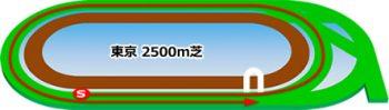 東京競馬場の芝コース2500m