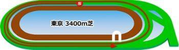 東京競馬場の芝コース3400m