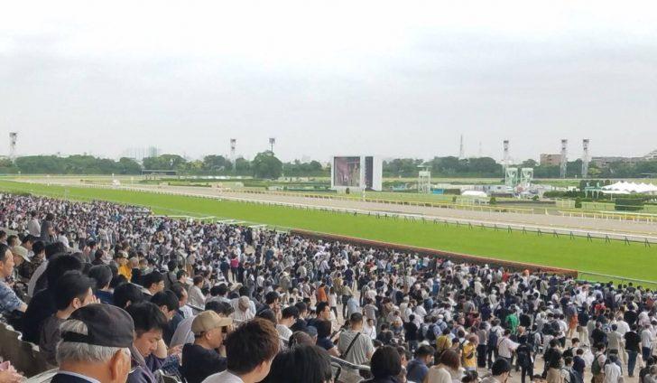 追い込み馬が得意な競馬場のイメージ