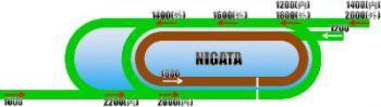 新潟競馬場のコースの画像