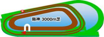 阪神競馬場の芝コース3000m