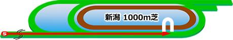 新潟競馬場の特徴芝1000m
