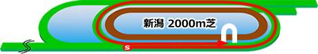 新潟競馬場の特徴芝2000m