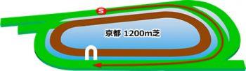京都競馬場の芝コース1200m