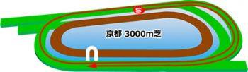 京都競馬場の芝コース3000m
